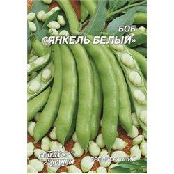 Насіння бобів Янкель білий