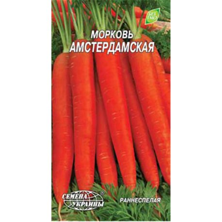 Семена моркови Амстердамская