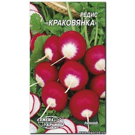 Семена редиса Краковянка