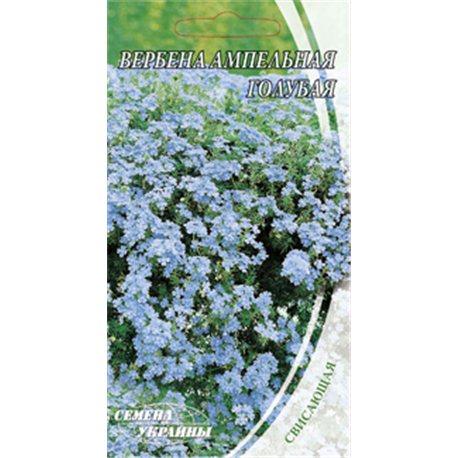 Семена вербены ампельной голубой
