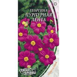 Семена георгины Пурпурная лента (срок годн. 2018)