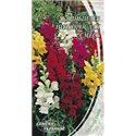 Насіння ротиків садових (Антіррінум) низькорослих суміш