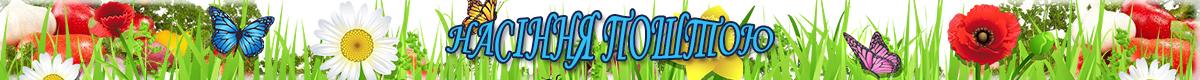 Насіння овочів та  квітів купити по доступних цінах недорого в Україні