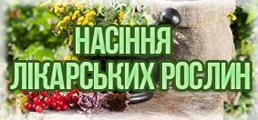 Купити насіння лікарських рослин
