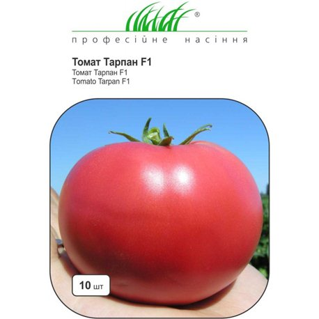 Насіння томату Тарпан F1