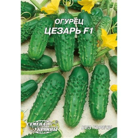Семена огурца Цезарь F1 пакет-гигант