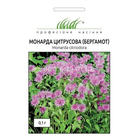 Семена монарды цитрусовой (бергамот)