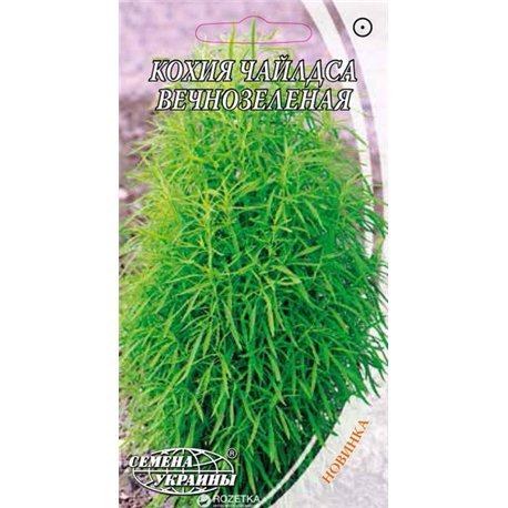 Насіння кохіі Чайлдса вічнозелена