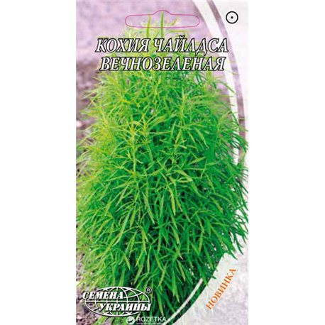 Семена кохии Чайлдса вечнозеленая