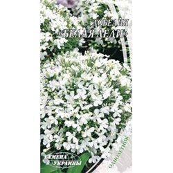 Семена лобелии Белая леди