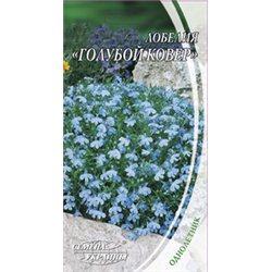 Семена лобелии Голубой ковер