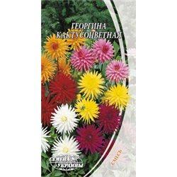 Семена георгины кактусоцветная смесь