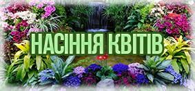 Купити насіння квітів